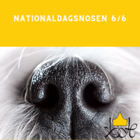 Nationaldagsnosen 6/6