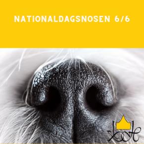 Nationaldagsnosen 6/6 - Nationaldagsnosen 6/6 kl 10.00
