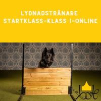 Lydnadstränare Startklass-Klass 1-Online
