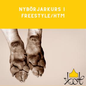 Nybörjarkurs i Freestyle/HtM - Nybörjarkurs i Freestyle/HtM med start 21/6