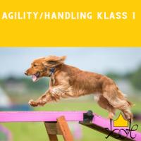 Agility handling