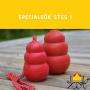 Specialsök Steg 1 - Specialsöksteg 1