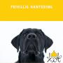 Frivillig hantering - Frivillig Hantering 28/9