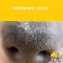 Nosework-steg 2 - Nosework steg 2 18/8