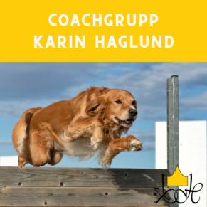 Tävlingslydnad/Brukslydnad Coach-grupp m Karin Haglund - Coachgrupp