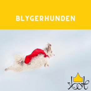 Blygerhunden - Blygerhunden 18/8