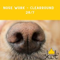 Nose Work – Clearround 28/7