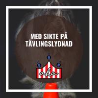 Med sikte på tävlingslydnad på Alingsås Hundarena
