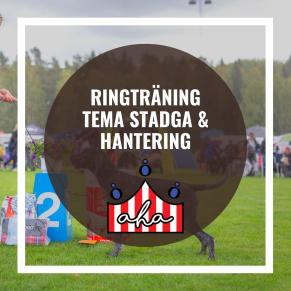 Ringträning-Tema stadga och hantering på Alingsås Hundarena - Ringträning-Tema stadga & hantering 7/12
