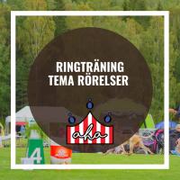 Ringträning-Tema rörelser på Alingsås Hundarena