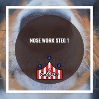Nose Work steg 1 på Alingsås Hundarena