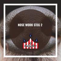 Nose Work steg 2 på Alingsås Hundarena