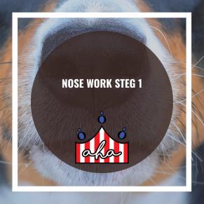 Nose Work steg 1 på Alingsås Hundarena - Nose Work steg 1 14/11 kl 10.00