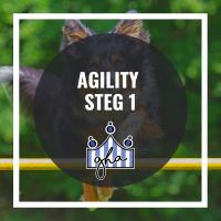 Agility steg 1