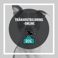 Tränarutbildning-Online