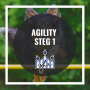 Agility steg 1 - Agility steg 1 4/11 EvaMarie Wergård