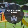 Agility handling - Handling Klass Eva Marie 4/11 20.00
