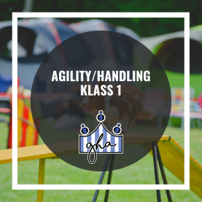 Agility handling - Handling Klass Eva Marie 4/11 18.15