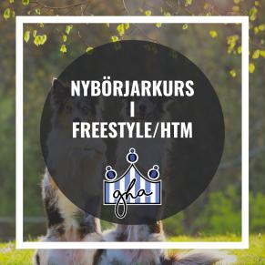 Nybörjarkurs i Freestyle/HtM - Nybörjarkurs i Freestyle/HtM 16/11