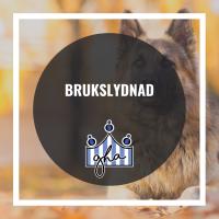 Brukslydnad