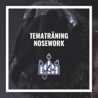 Tematräning Nosework