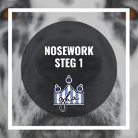 Nosework steg 1