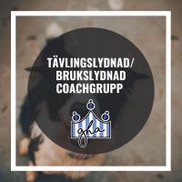 Tävlingslydnad/Brukslydnad Coach-grupp m Karin Haglund