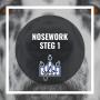 Nosework steg 1 - Nosework steg 1 27/10 17.30