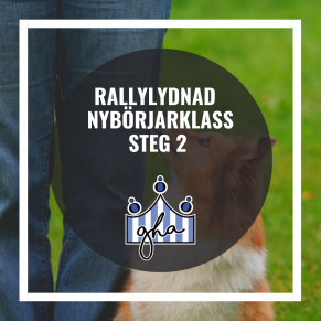 Rallylydnad nybörjarklass steg 2 - Rally nybörjarklass steg 2 8/11