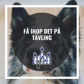 Få ihop det på tävling - Få ihop det på tävling 16/9
