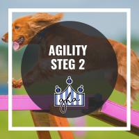 Agility steg 2