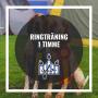 Ringträning 1 timme - Ringträning 18/12  kl 10.15