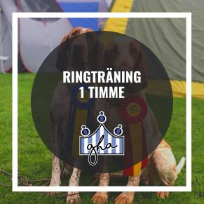 Ringträning 1 timme - Ringträning 14/11 kl 10.15