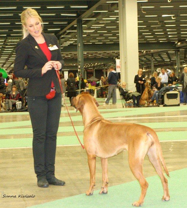 Thanzi daughter Ch RidgeBows Scilla of Thanzi BOB