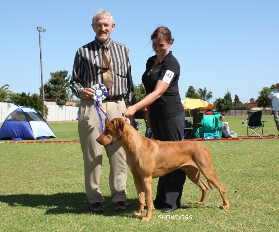 Oshy awarded reserve minigrand by Mr Danie Kritzinger 20/2 2011