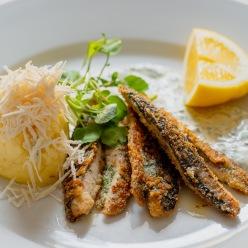 Makrill fisk Rickar Waje Lasse Maja (1 av 1)