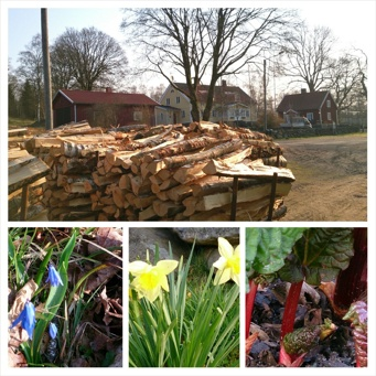 gällareds B&B, våren, vårtecken