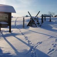 Yttra Bergs naturreservat