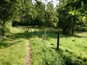 Vandra i naturreservat