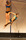 SM-Poledance-2014-18