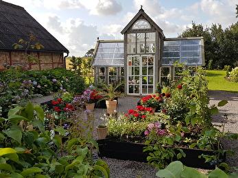 Växthuset stod klart 2016 och nu håller vi på att skapa en köksträdgård framför växthuset.