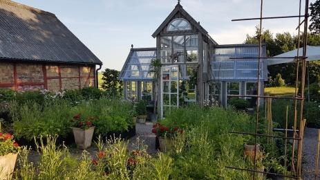 Välkommen till Furutorps trädgård! Gården stod klar år 1840 och växthuset känns nästan lika gammalt, men färdigställdes 2016.