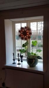 Klassisk stil i vardagsrummets djupa fönsternischer med vitt och grönt. Halmstjärnan har fått komma fram igen efter många års vila.