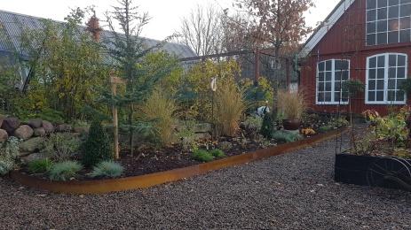 Ny plantering vid köksträdgården oktober 2018