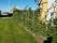 Furutorp-trädgård-trädgårdsdesign-häckar-avenbok-carpinus-betulus