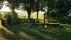 lust-trädgård