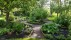 skymning-trädgård-vit-perenn