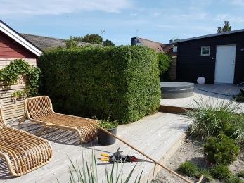 En vanlig villaträdgård förvandlades till en beachgarden i vejbystrand sommaren 2016