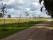 Furutorp-trädgård-brunskog-allé-kärrek