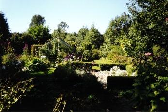 Min trädgård efter ca 10år.